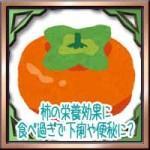 柿の栄養に美容健康効果!タンニンや食べ過ぎで便秘や下痢に!?