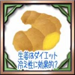 生姜はダイエット冷え性に効果的?栄養効能に保存は乾燥冷凍どっち?