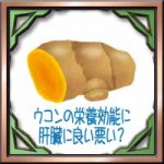 ウコンの栄養効能に肝臓に良い悪い?効果的な飲み方摂取タイミングは?