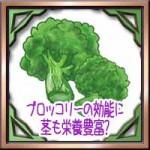 ブロッコリーの効能に茎も栄養豊富?美味しい茹で方に保存方法