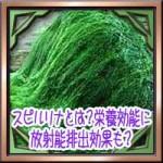 スピルリナとは?栄養効能に育毛や放射能排出効果も?副作用は平気か