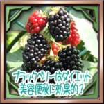 ブラックベリーはダイエット美容便秘に効果的?栄養効能に種の食べ方は?