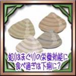 蛤(はまぐり)の栄養効能に食べ過ぎは下痢に?旬の時期や保存方法